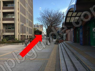 横浜市庁舎からハマスタへの道