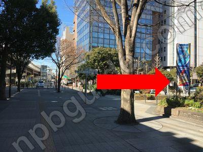 横浜市庁舎の敷地