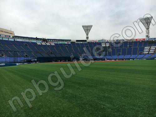 横浜スタジアムの外野