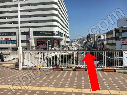 夏島貝塚通り