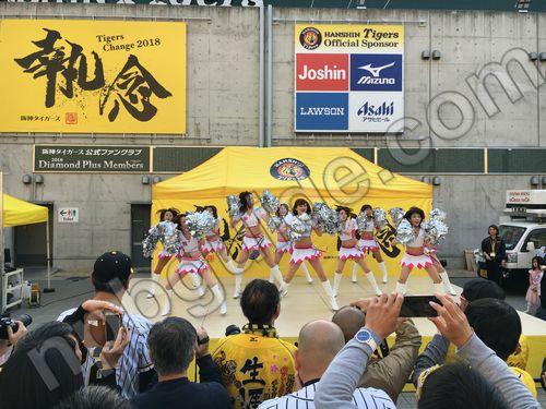 阪神タイガースチアリーダー