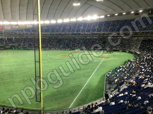 東京ドームの外野席