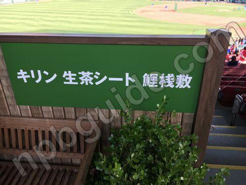 キリン生茶シート鯉桟敷