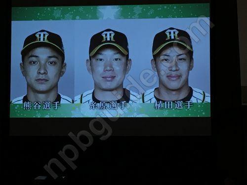 阪神タイガースの選手
