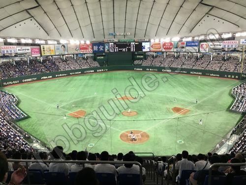 プロ野球を見るなら